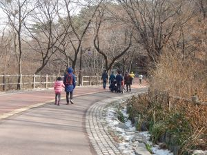 It's a very pleasant walk to the hanok village